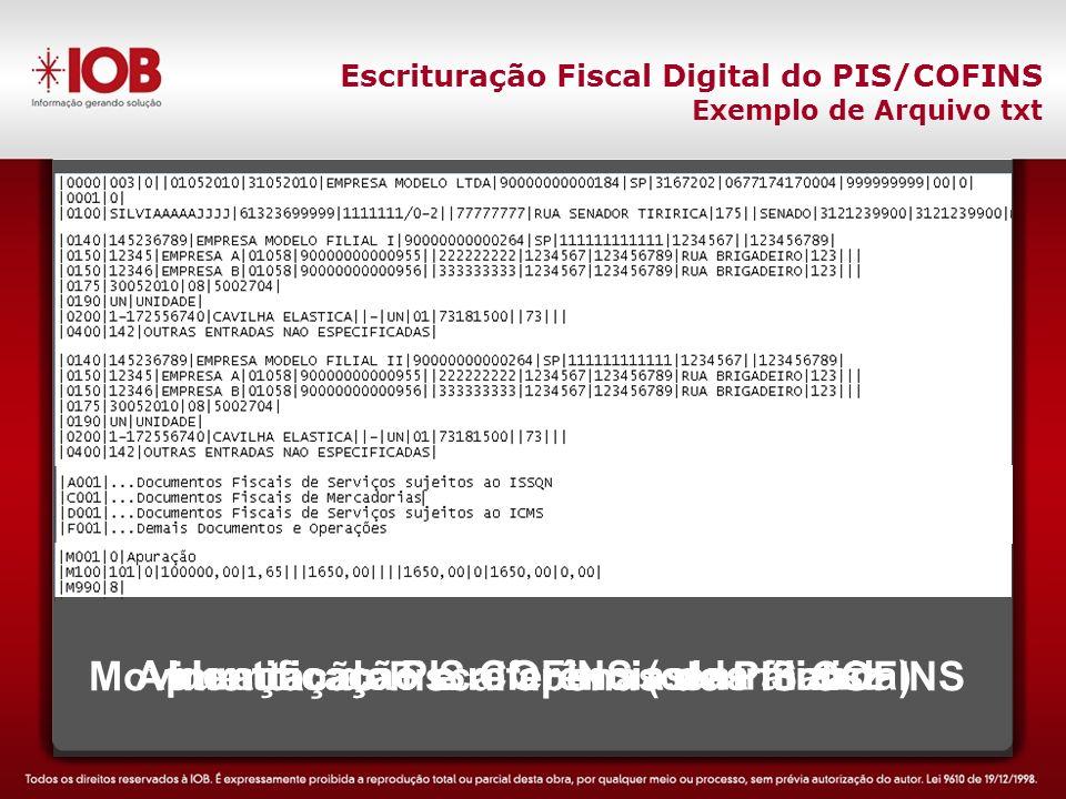 Escrituração Fiscal Digital do PIS/COFINS Exemplo de Arquivo txt Movimentação Fiscal apenas de PIS COFINS Apuração do PIS COFINS (centralizada) Identificação e referências da matriz Identificação e referência das filiais