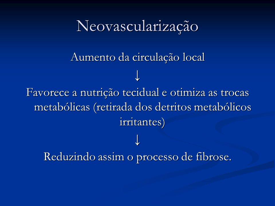 Neovascularização Aumento da circulação local Favorece a nutrição tecidual e otimiza as trocas metabólicas (retirada dos detritos metabólicos irritant