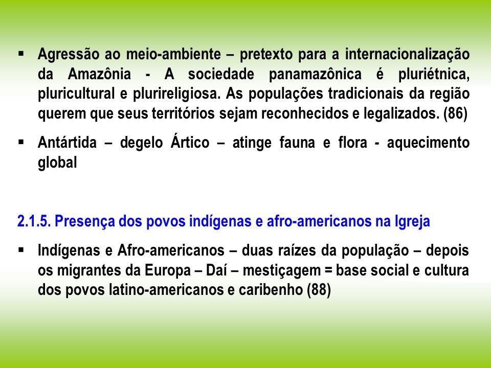 Agressão ao meio-ambiente – pretexto para a internacionalização da Amazônia - A sociedade panamazônica é pluriétnica, pluricultural e plurireligiosa.