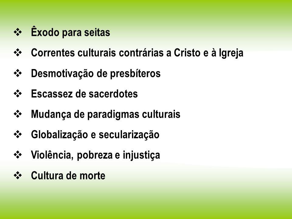Êxodo para seitas Correntes culturais contrárias a Cristo e à Igreja Desmotivação de presbíteros Escassez de sacerdotes Mudança de paradigmas culturai