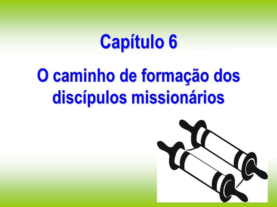 Capítulo 6 O caminho de formação dos discípulos missionários