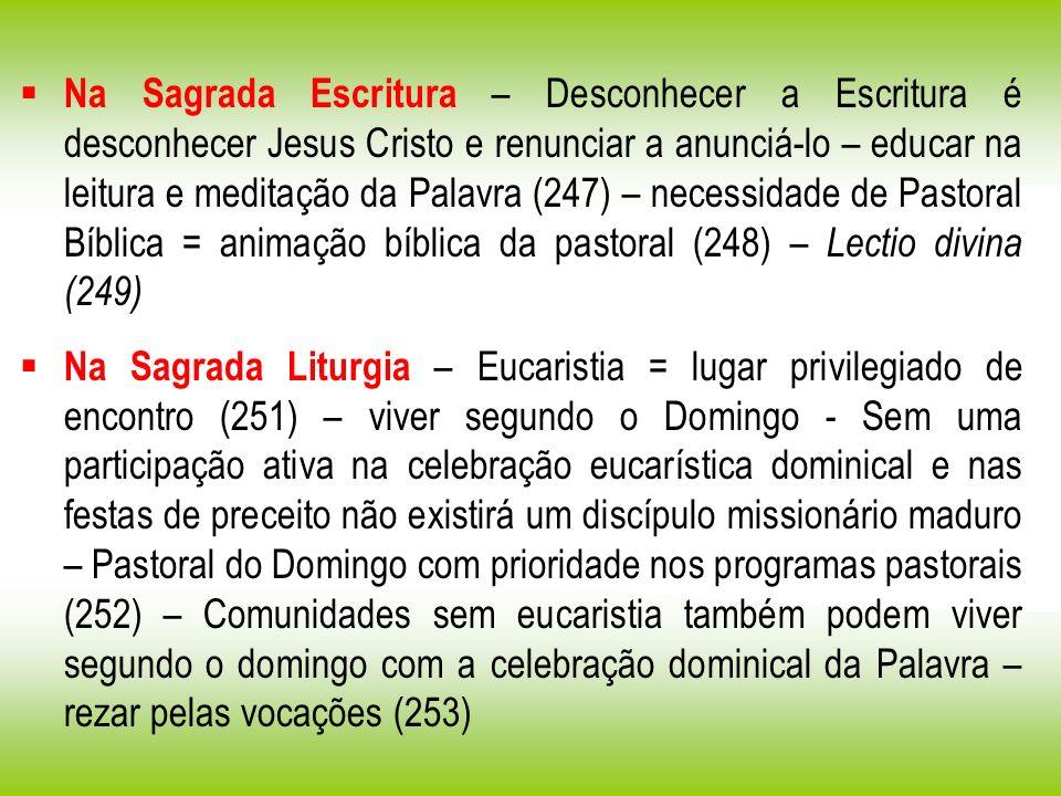 Na Sagrada Escritura – Desconhecer a Escritura é desconhecer Jesus Cristo e renunciar a anunciá-lo – educar na leitura e meditação da Palavra (247) –
