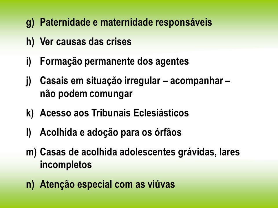 g)Paternidade e maternidade responsáveis h)Ver causas das crises i)Formação permanente dos agentes j)Casais em situação irregular – acompanhar – não p