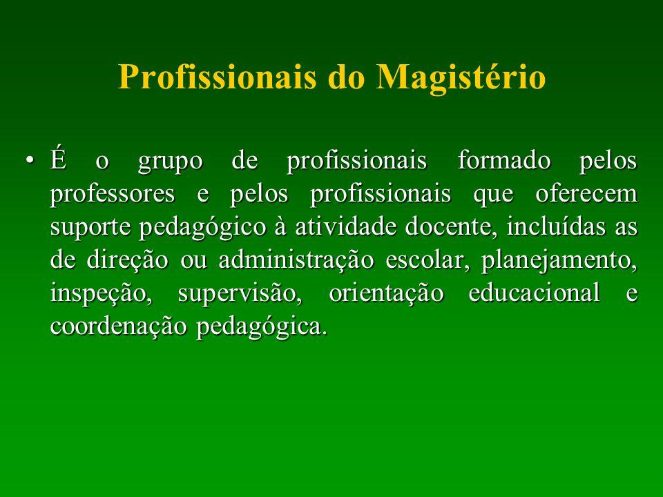 Profissionais do Magistério É o grupo de profissionais formado pelos professores e pelos profissionais que oferecem suporte pedagógico à atividade doc