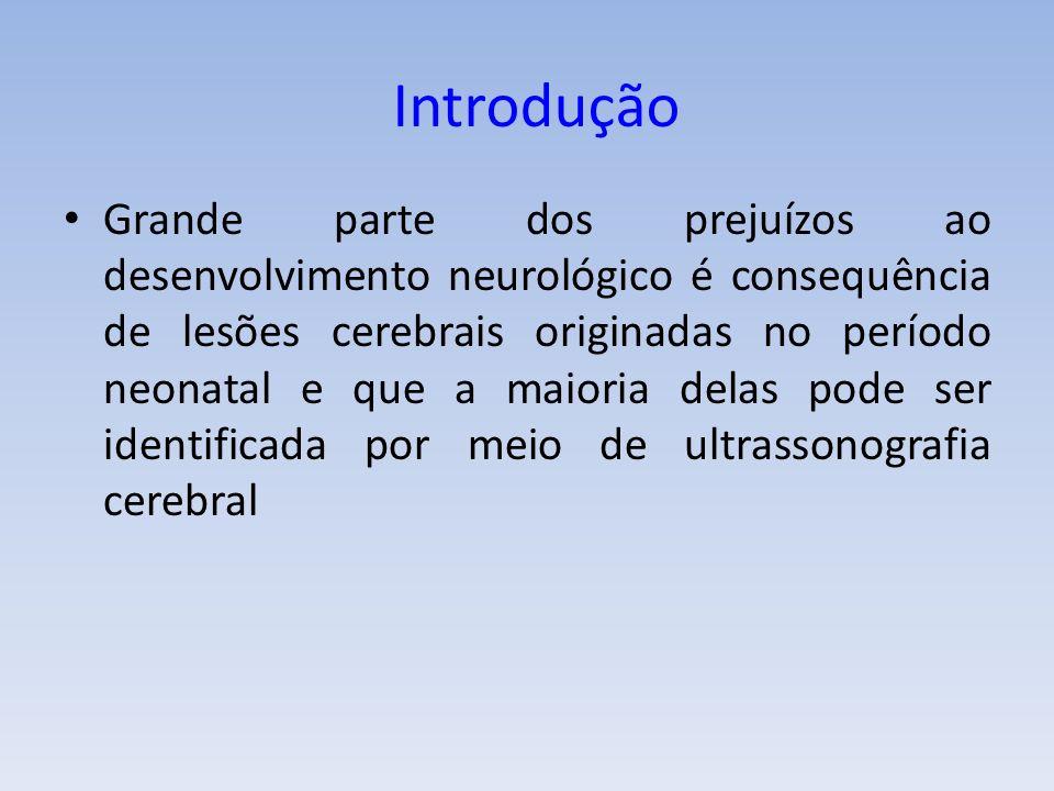 Grande parte dos prejuízos ao desenvolvimento neurológico é consequência de lesões cerebrais originadas no período neonatal e que a maioria delas pode ser identificada por meio de ultrassonografia cerebral Introdução