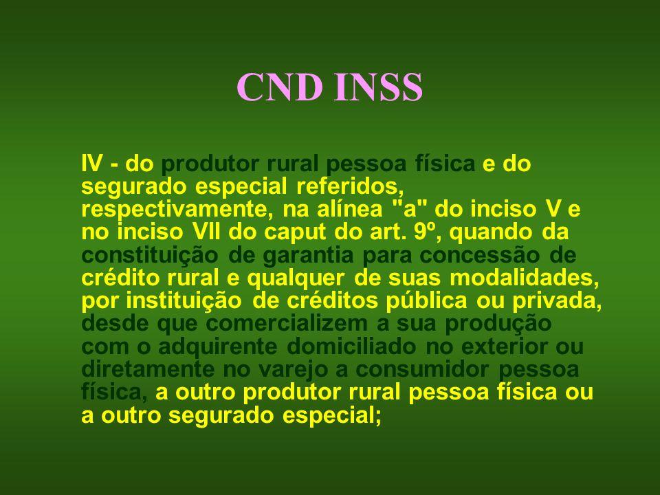 CND INSS IV - do produtor rural pessoa física e do segurado especial referidos, respectivamente, na alínea