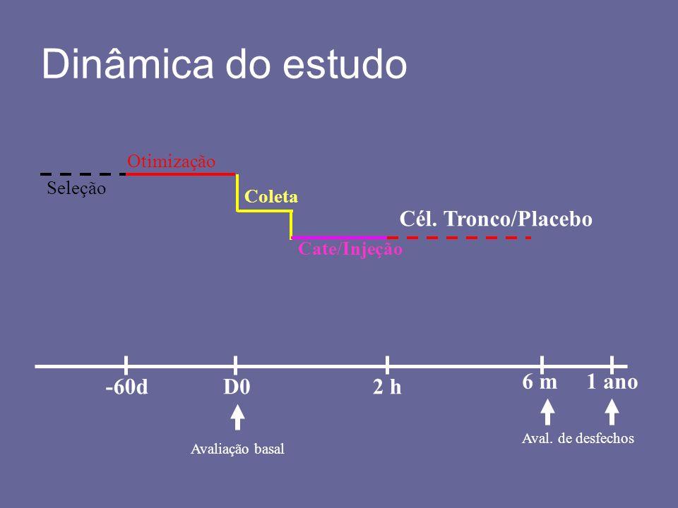 Dinâmica do estudo Seleção Otimização Coleta Cate/Injeção Cél. Tronco/Placebo -60dD02 h 6 m1 ano Avaliação basal Aval. de desfechos