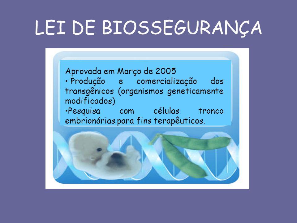 LEI DE BIOSSEGURANÇA Aprovada em Março de 2005 Produção e comercialização dos transgênicos (organismos geneticamente modificados) Pesquisa com células
