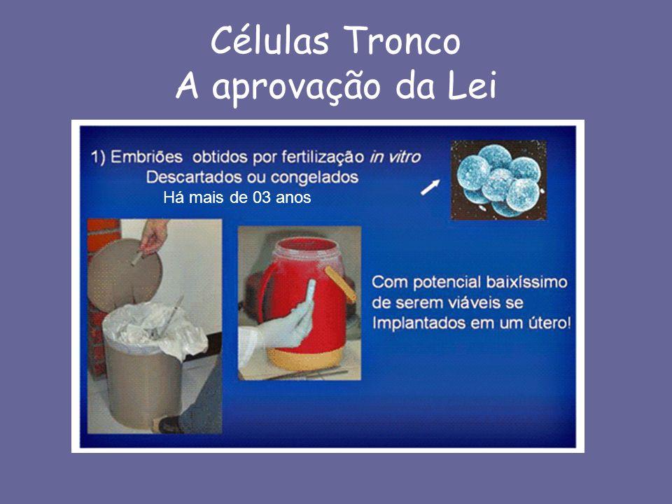 Transplante de Células Tronco 12 3 4 5