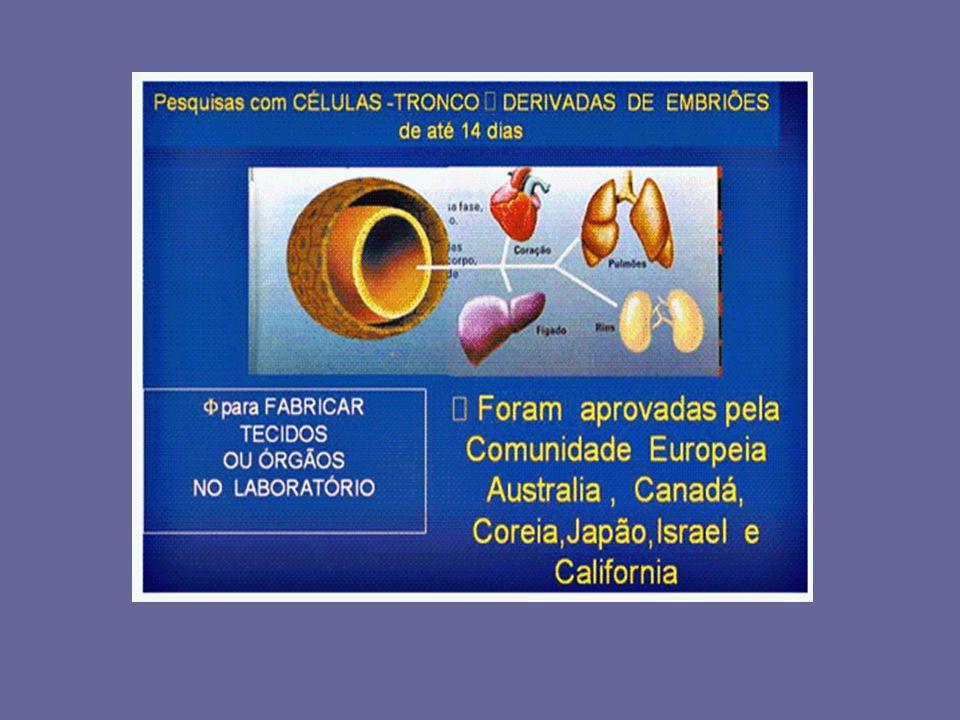 Pesquisa Clínica Boas Práticas Clínicas (GCP:Good Clinical Practices) – publicadas em maio 1996 é um conjunto de normas e orientações éticas.