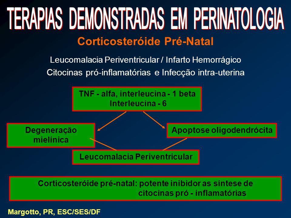 Corticosteróide Pré-Natal Leucomalacia Periventricular / Infarto Hemorrágico Citocinas pró-inflamatórias e Infecção intra-uterina Margotto, PR, ESC/SE