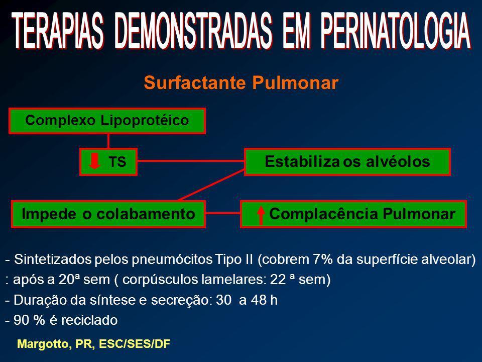Surfactante Pulmonar Complexo Lipoprotéico TS Estabiliza os alvéolos Impede o colabamento Complacência Pulmonar - Sintetizados pelos pneumócitos Tipo
