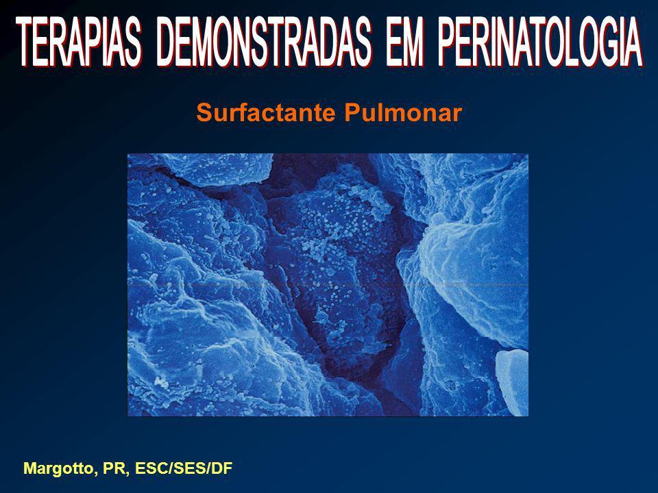 Surfactante Pulmonar Margotto, PR, ESC/SES/DF
