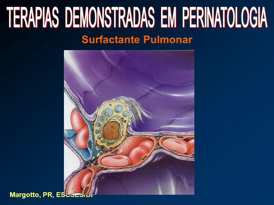 Surfactante Pulmonar Margotto, PR, ESCSES/DF