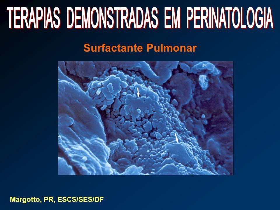 Surfactante Pulmonar Margotto, PR, ESCS/SES/DF