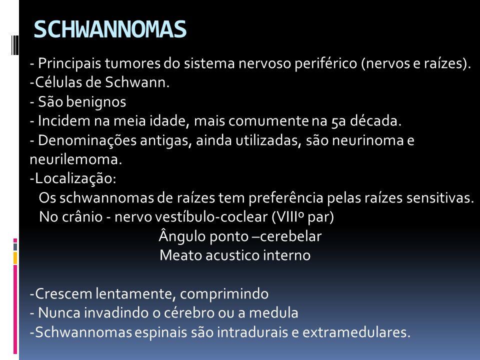 SCHWANNOMAS - Principais tumores do sistema nervoso periférico (nervos e raízes). -Células de Schwann. - São benignos - Incidem na meia idade, mais co