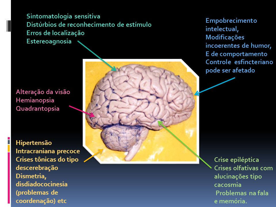 Empobrecimento intelectual, Modificações incoerentes de humor, E de comportamento Controle esfincteriano pode ser afetado Crise epiléptica Crises olfa