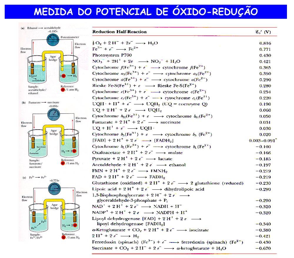 MEDIDA DO POTENCIAL DE ÓXIDO-REDUÇÃO
