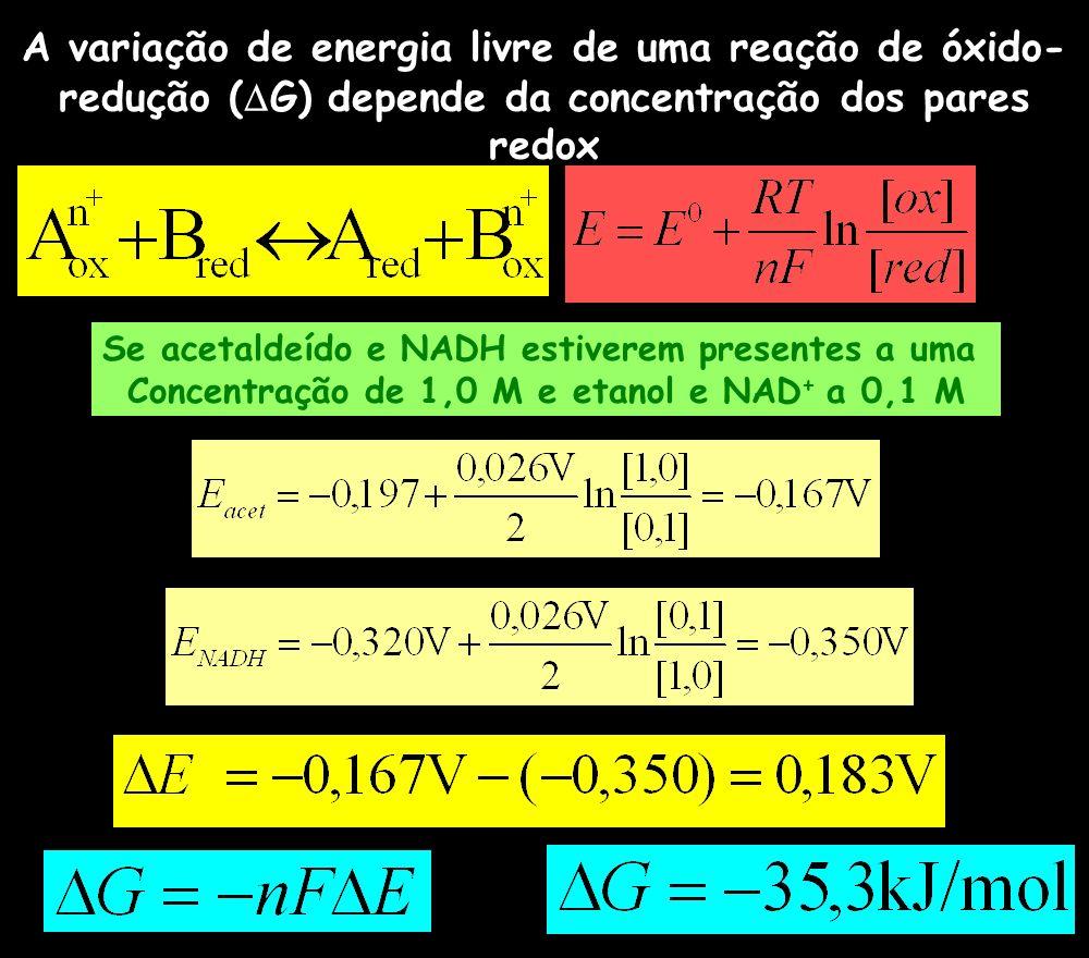 A variação de energia livre de uma reação de óxido- redução ( G) depende da concentração dos pares redox Se acetaldeído e NADH estiverem presentes a u