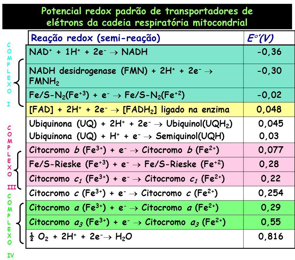 NAD + + 1H + + 2e - NADH-0,36 NADH desidrogenase (FMN) + 2H + + 2e - FMNH 2 -0,30 Fe/S-N 2 (Fe +3 ) + e - Fe/S-N 2 (Fe +2 )-0,02 [FAD] + 2H + + 2e - [