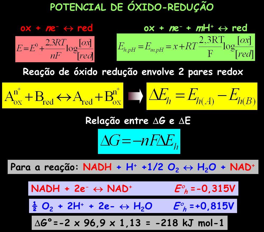 POTENCIAL DE ÓXIDO-REDUÇÃO ox + ne - redox + ne - + mH + red Reação de óxido redução envolve 2 pares redox Relação entre G e E Para a reação: NADH + H