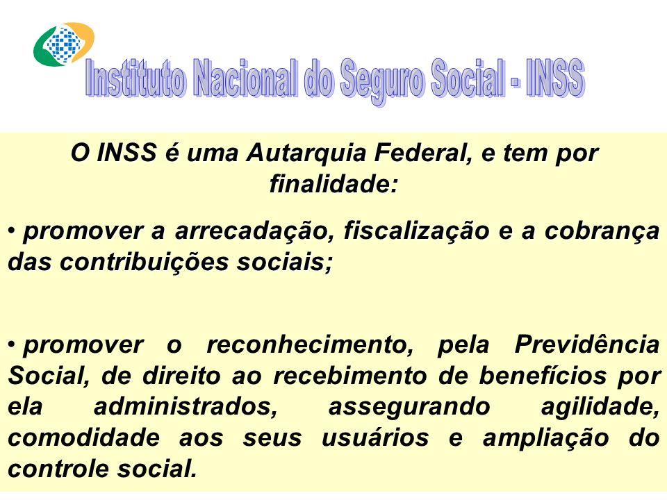 MISSÃO : Lei nº 8.212/1991, artigo 3º A Previdência Social tem por fim assegurar aos seus beneficiários meios indispensáveis de manutenção, por motivo