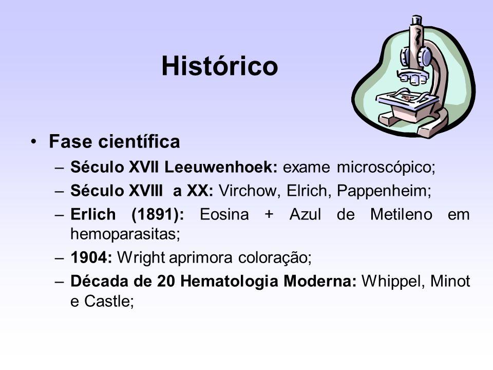 Histórico Fase científica –Século XVII Leeuwenhoek: exame microscópico; –Século XVIII a XX: Virchow, Elrich, Pappenheim; –Erlich (1891): Eosina + Azul