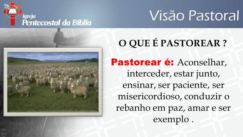 O QUE É PASTOREAR ? Pastorear é: Aconselhar, interceder, estar junto, ensinar, ser paciente, ser misericordioso, conduzir o rebanho em paz, amar e ser