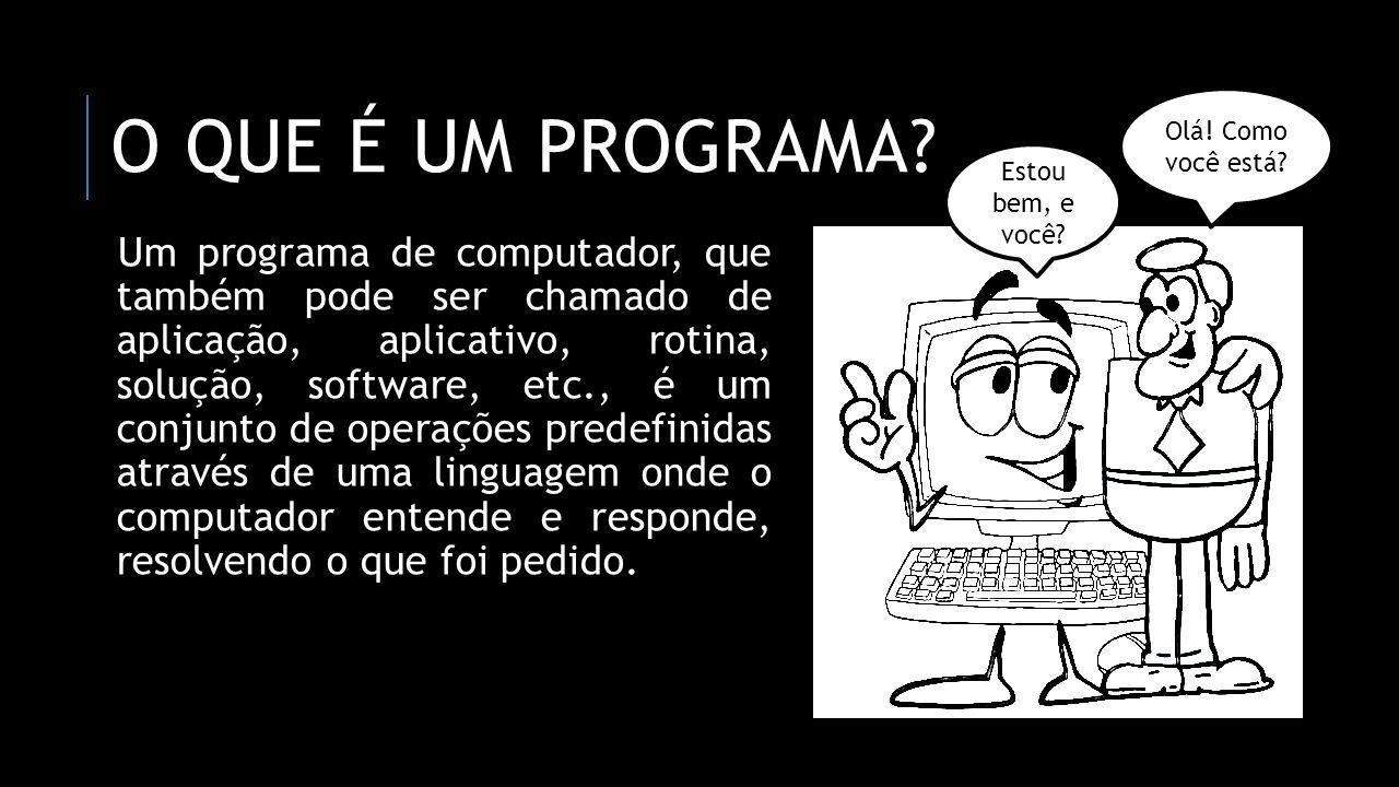 O QUE É UM PROGRAMA? Um programa de computador, que também pode ser chamado de aplicação, aplicativo, rotina, solução, software, etc., é um conjunto d