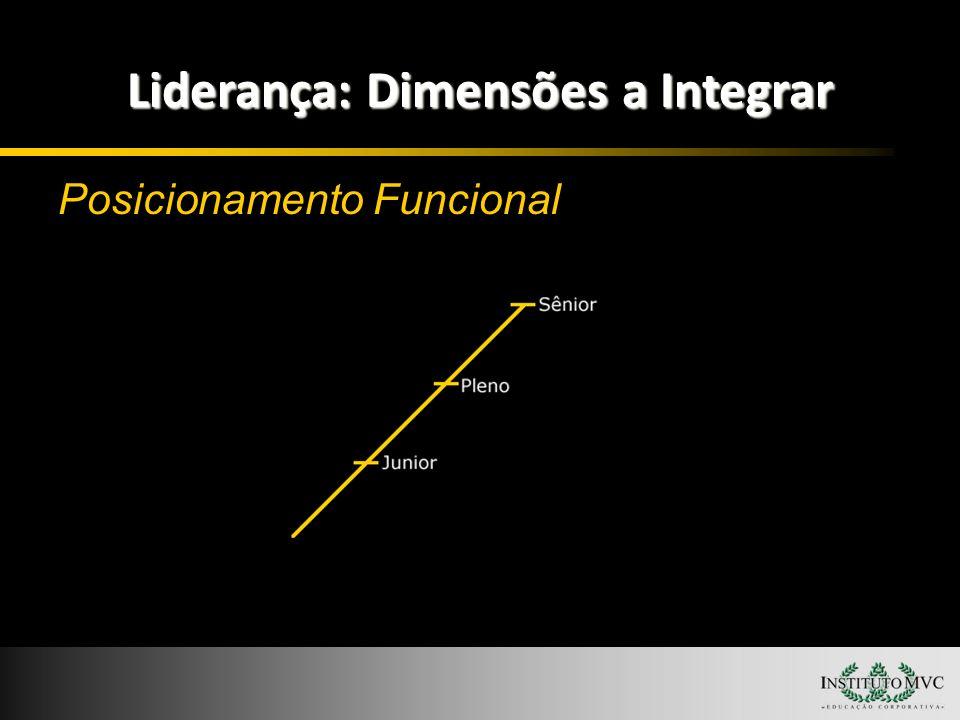 Liderança: Dimensões a Integrar Posicionamento Funcional