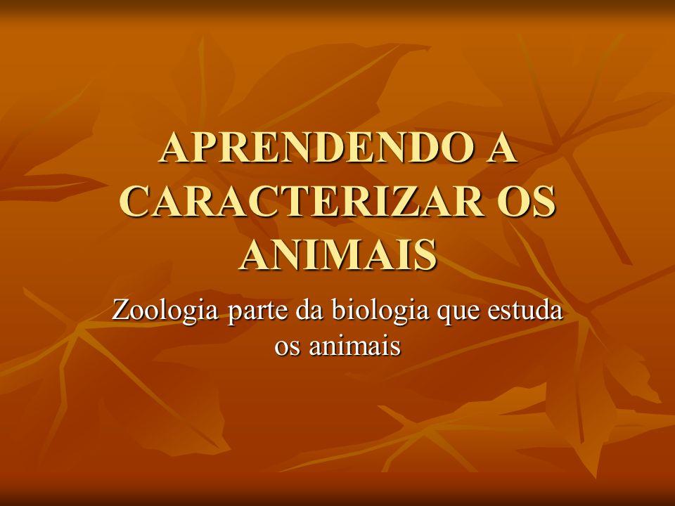 APRENDENDO A CARACTERIZAR OS ANIMAIS Zoologia parte da biologia que estuda os animais