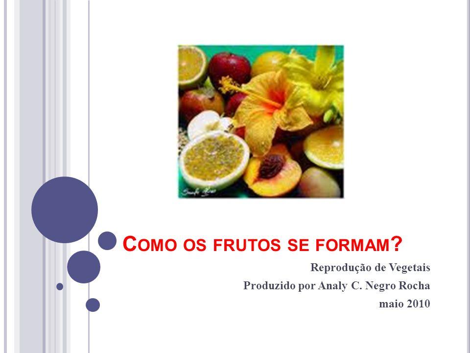 C OMO OS FRUTOS SE FORMAM ? Reprodução de Vegetais Produzido por Analy C. Negro Rocha maio 2010