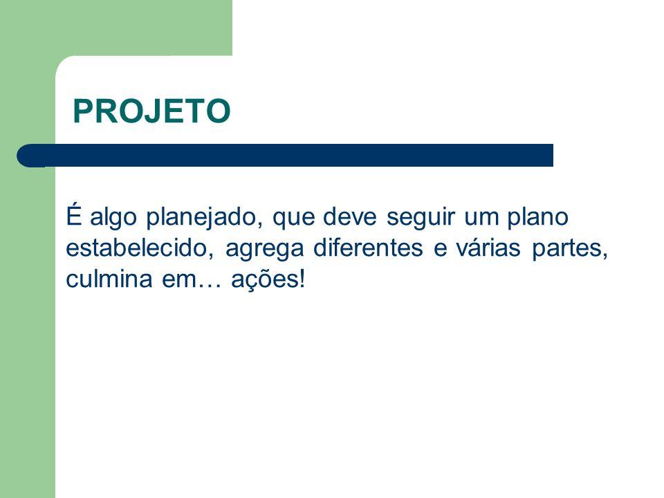 PROGRAMA É um grupo de projetos relacionados entre si e coordenados de maneira articulada.