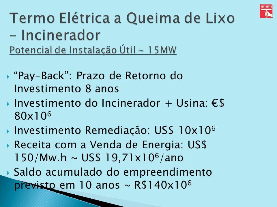 Pay-Back: Prazo de Retorno do Investimento 8 anos Investimento do Incinerador + Usina: $ 80x10 6 Investimento Remediação: US$ 10x10 6 Receita com a Ve