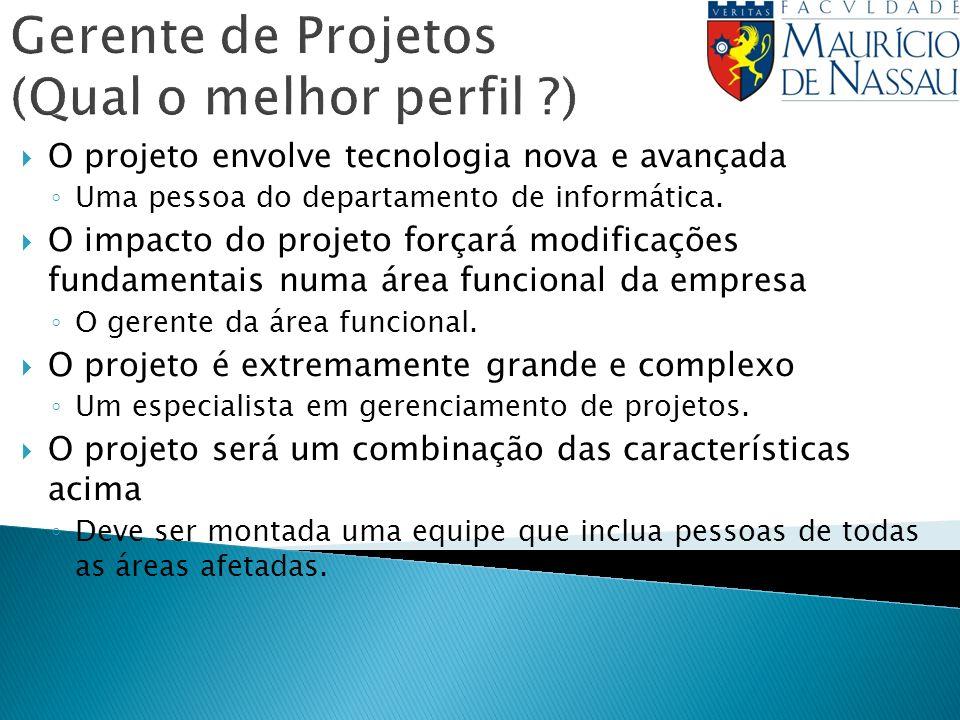 Gerente de Projetos (Qual o melhor perfil ?) O projeto envolve tecnologia nova e avançada Uma pessoa do departamento de informática. O impacto do proj
