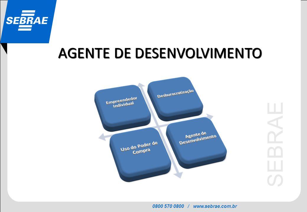 0800 570 0800 / www.sebrae.com.br SEBRAE AGENTE DE DESENVOLVIMENTO