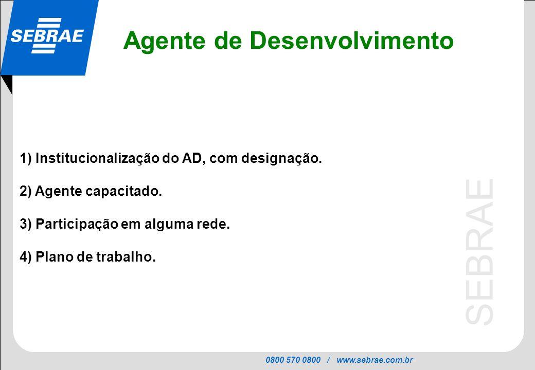 0800 570 0800 / www.sebrae.com.br SEBRAE 1) Institucionalização do AD, com designação. 2) Agente capacitado. 3) Participação em alguma rede. 4) Plano