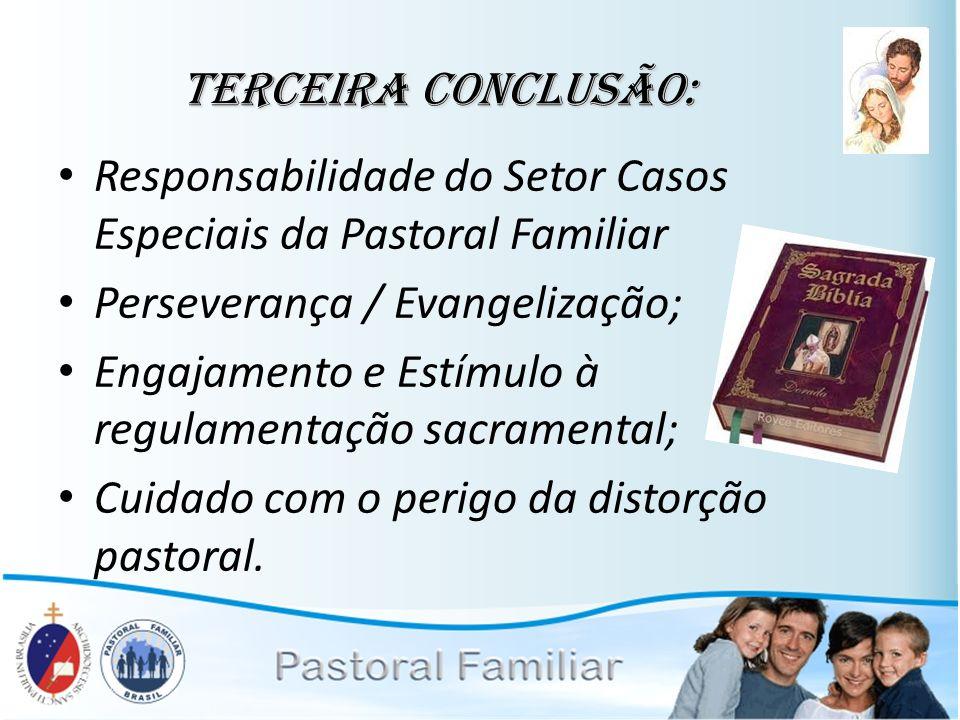 Terceira conclusão: Responsabilidade do Setor Casos Especiais da Pastoral Familiar Perseverança / Evangelização; Engajamento e Estímulo à regulamentaç