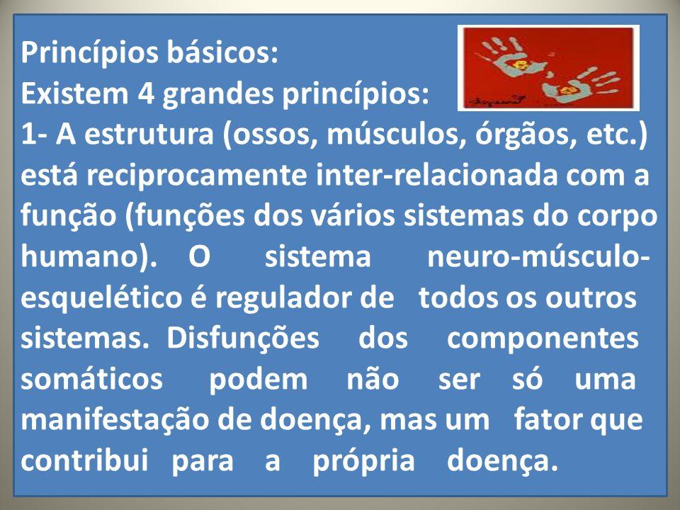 .. Princípios básicos: Existem 4 grandes princípios: 1- A estrutura (ossos, músculos, órgãos, etc.) está reciprocamente inter-relacionada com a função