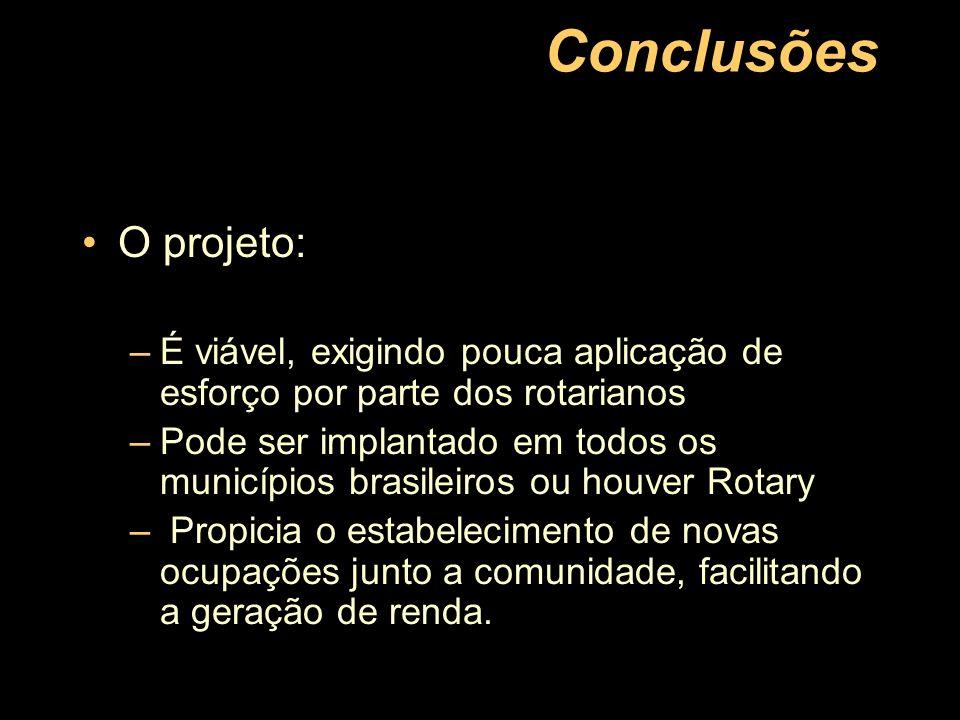 Conclusões O projeto: –É viável, exigindo pouca aplicação de esforço por parte dos rotarianos –Pode ser implantado em todos os municípios brasileiros