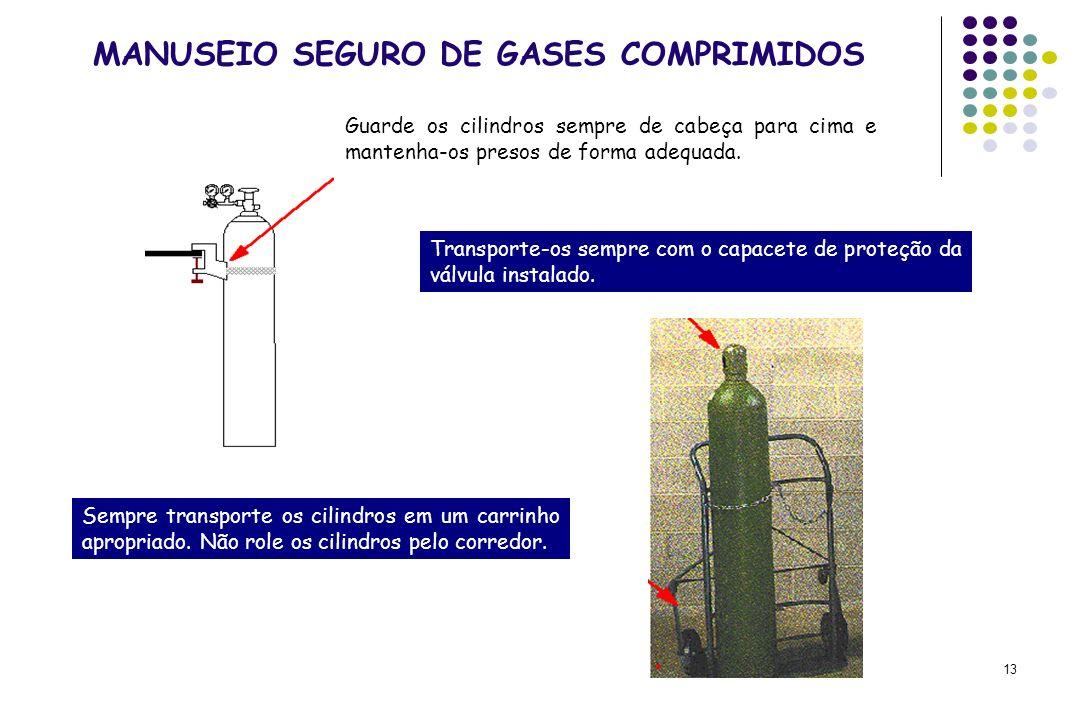 13 MANUSEIO SEGURO DE GASES COMPRIMIDOS Guarde os cilindros sempre de cabeça para cima e mantenha-os presos de forma adequada. Transporte-os sempre co