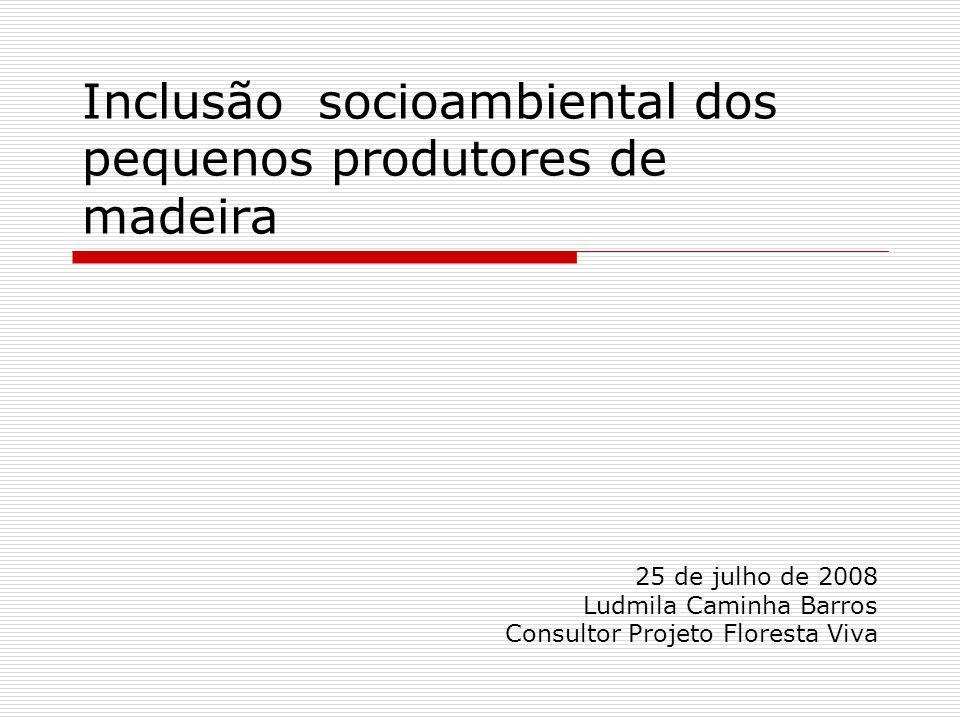 Inclusão socioambiental dos pequenos produtores de madeira 25 de julho de 2008 Ludmila Caminha Barros Consultor Projeto Floresta Viva