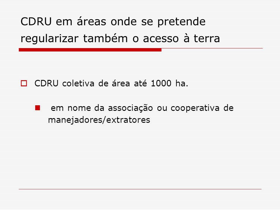 CDRU em áreas onde se pretende regularizar também o acesso à terra CDRU coletiva de área até 1000 ha.