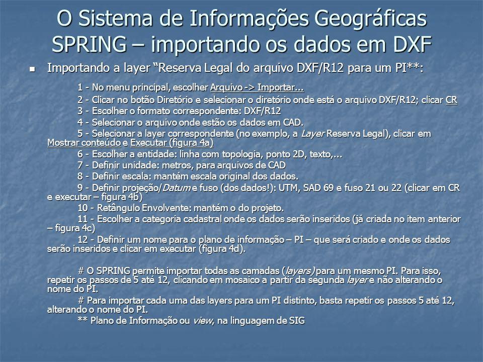 O Sistema de Informações Geográficas SPRING – importando os dados em DXF Importando a layer Reserva Legal do arquivo DXF/R12 para um PI**: Importando