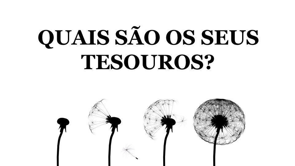 QUAIS SÃO OS SEUS TESOUROS?