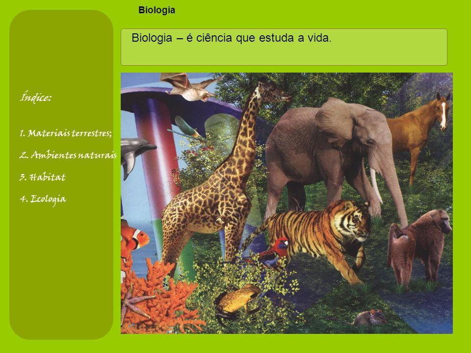 Ramos da Biologia Índice: 1.Materiais terrestres; 2.