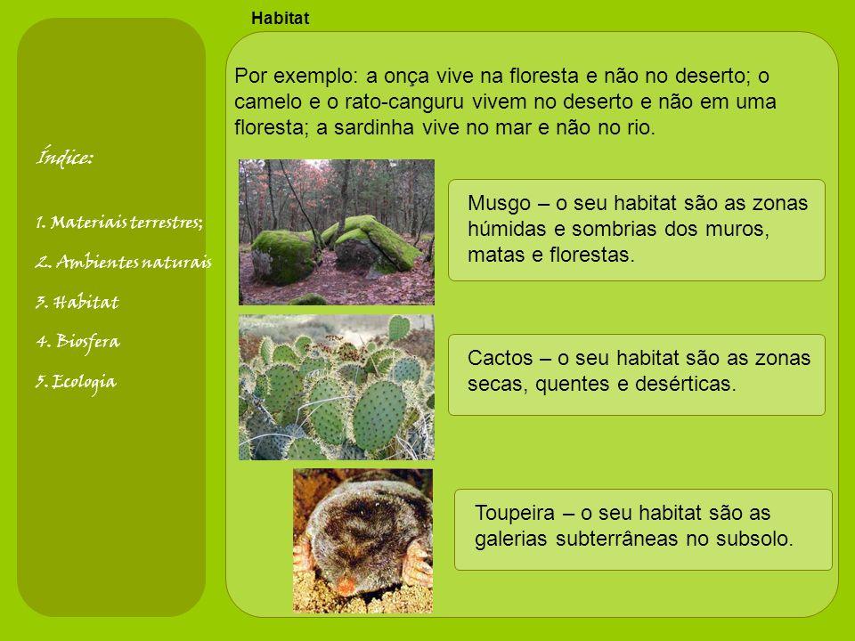 Habitat Por exemplo: a onça vive na floresta e não no deserto; o camelo e o rato-canguru vivem no deserto e não em uma floresta; a sardinha vive no mar e não no rio.