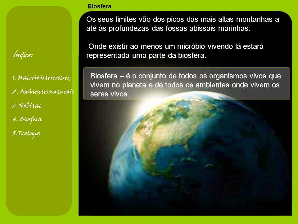 Biosfera Biosfera – é o conjunto de todos os organismos vivos que vivem no planeta e de todos os ambientes onde vivem os seres vivos.