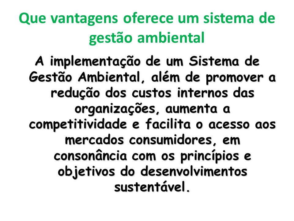 Que vantagens oferece um sistema de gestão ambiental A implementação de um Sistema de Gestão Ambiental, além de promover a redução dos custos internos das organizações, aumenta a competitividade e facilita o acesso aos mercados consumidores, em consonância com os princípios e objetivos do desenvolvimentos sustentável.