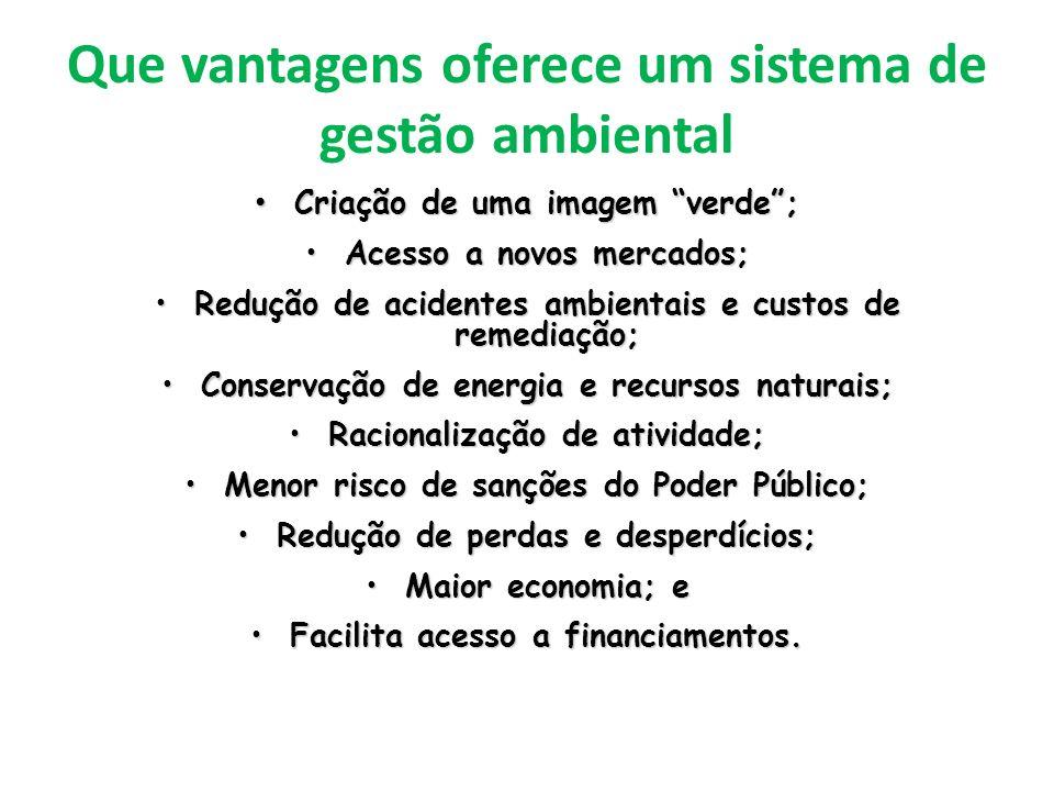 Que vantagens oferece um sistema de gestão ambiental Criação de uma imagem verde; Criação de uma imagem verde; Acesso a novos mercados;Acesso a novos